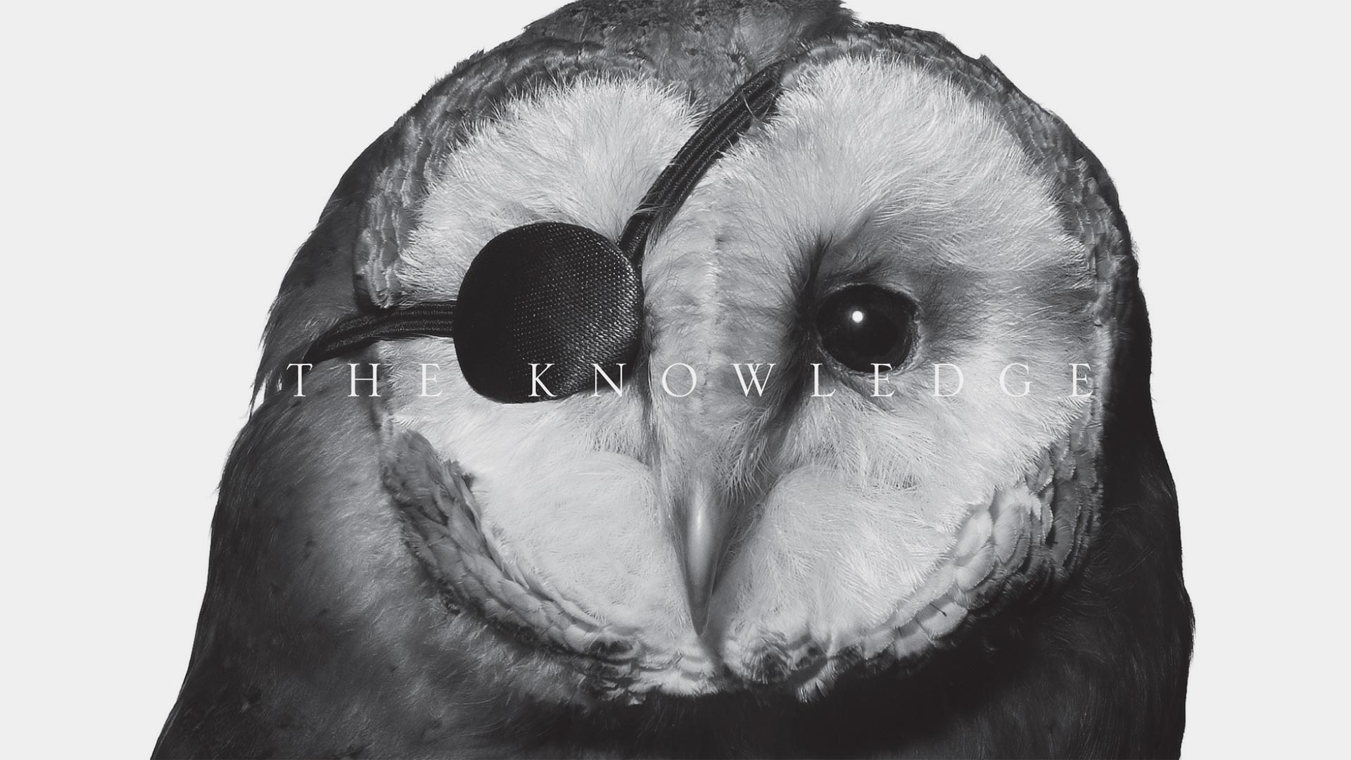 knowledge_001